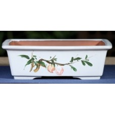 ZX109 - White Rectangle Bonsai Pot 21.5cm